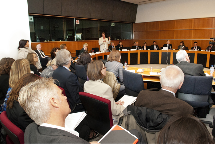 IMI session at the European Parliament, 6 October 2011. Photo - Simon Pugh