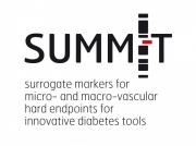 SUMMIT project logo